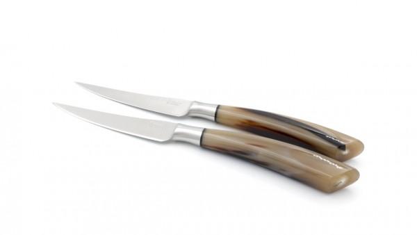 Saladini Steakmesser-Set 2-tlg. Hornspitze