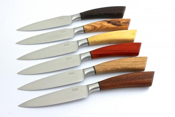 Saladini Steakmesser-Set Rustico 6-tlg. Hölzer gemischt